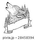 おおかみ オオカミ 狼のイラスト 28458394