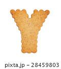 Y アルファベット ビスケットの写真 28459803