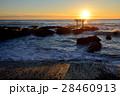 大洗海岸 海 太陽の写真 28460913