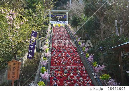 富咲の石段、遠見岬神社の雛祭り、房総勝浦、千葉県 28461095