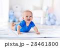 ベビー 赤ちゃん 赤ん坊の写真 28461800