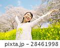 桜 女性 菜の花の写真 28461998