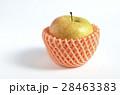 リンゴ(サン金星) 28463383