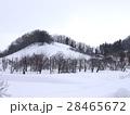 冬の里山 28465672