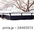 雪の黒塀 28465674