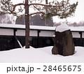 雪の庭園 28465675