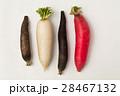 ダイコン 大根 根菜の写真 28467132