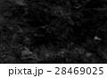 黒色 黒 ブラックの写真 28469025
