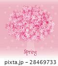 桜 桜の木 満開のイラスト 28469733