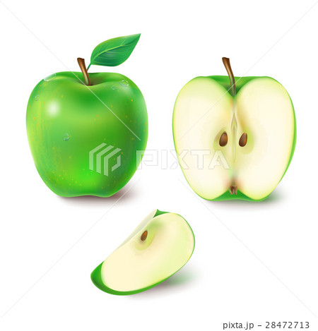 Vector illustration of a juicy green apple. 28472713