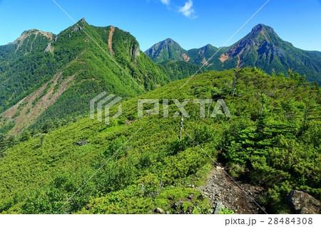 八ヶ岳連峰・権現岳と赤岳の眺め 28484308