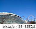 東京ドーム 28486528