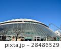 東京ドーム 28486529