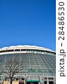 東京ドーム 28486530