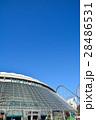 東京ドーム 28486531