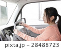 運転席の若い女性 28488723