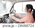 運転席の若い女性 28488724