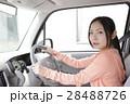 運転席の若い女性 28488726