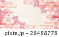 桜 桜の花 春のイラスト 28488778