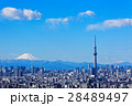 富士山 晴れ 都会の写真 28489497
