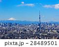 富士山 晴れ 都会の写真 28489501
