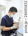 歯科 歯医者 デンタルの写真 28495832