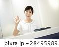 歯科 歯医者 医療の写真 28495989