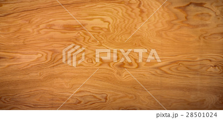 Wood Texture Background 28501024