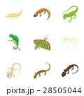 イグアナ アイコン イコンのイラスト 28505044