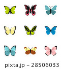 Butterfly icons set, flat style 28506033