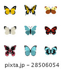 Flying butterfly icons set, flat style 28506054