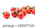 ミニトマト 野菜 トマトの写真 28507719