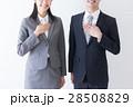 人物 ビジネス 男女の写真 28508829