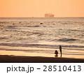 砂浜 影 シルエットの写真 28510413
