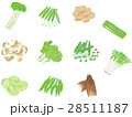 春野菜セット <ばらばらの野菜>  28511187