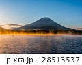朝 朝霧 富士山の写真 28513537