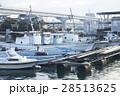 漁港 港 波止場の写真 28513625