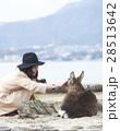 宮島 女子旅 撮影 28513642
