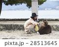 宮島 女子旅 撮影 28513645