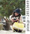 宮島 女子旅 撮影 28513649