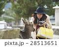 宮島 女子旅 撮影 28513651