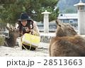 宮島 女子旅 撮影 28513663