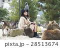 宮島 女子旅 撮影 28513674