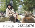 宮島 女子旅 撮影 28513676