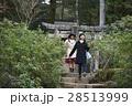 宮島 観光 自然めぐり 散策をする女性 28513999
