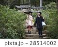 宮島 観光 自然めぐり 散策をする女性 28514002