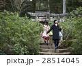 宮島 観光 自然めぐり 散策をする女性 28514045