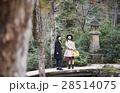 宮島 観光 自然めぐり 散策をする女性 28514075