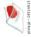 苺の洗浄法 28514613