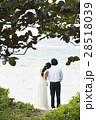 沖縄 28518039